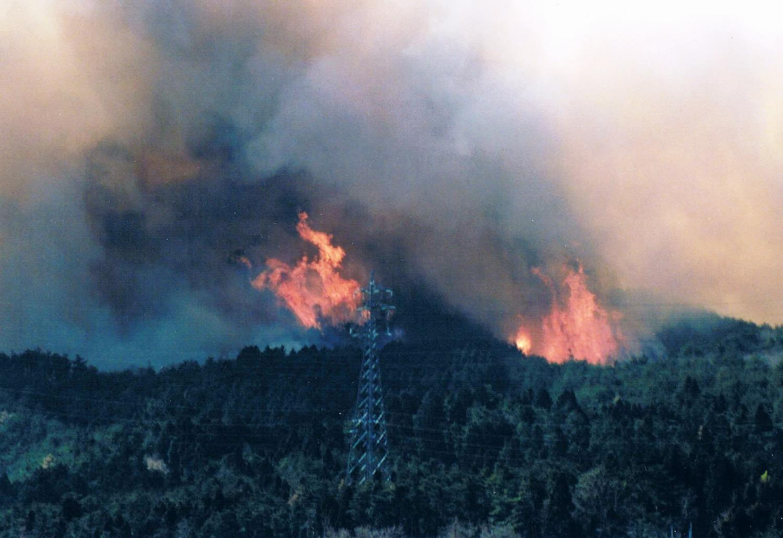 茨城 山 火事 茨城・桜川市本木の山火事の場所は雨引山|原因や犯人は?|きよし速...